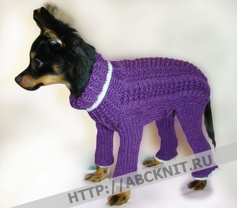 Вязаный комбинезон для собаки